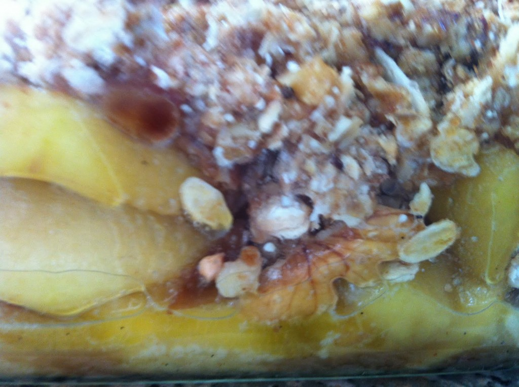 Apple crumble with dates, walnuts oats coconut and spices