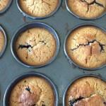 muffin-pic-150x150